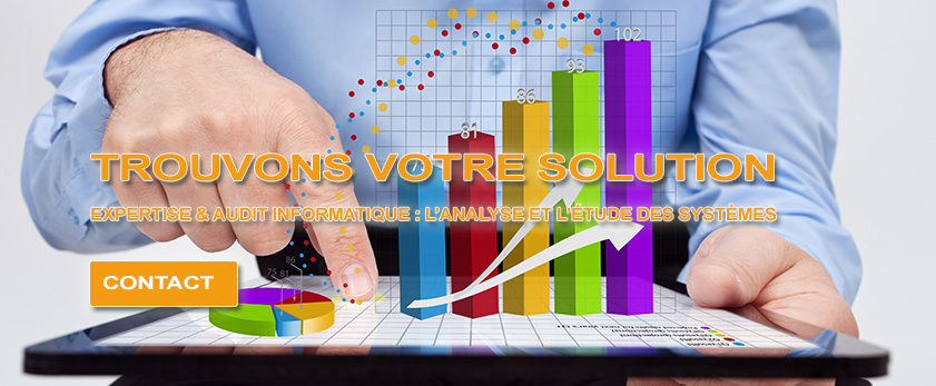 expertise informatique